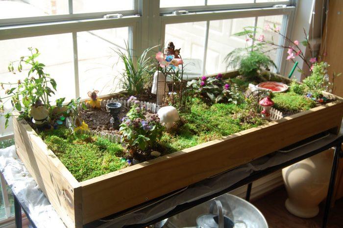 Setting up an indoor garden