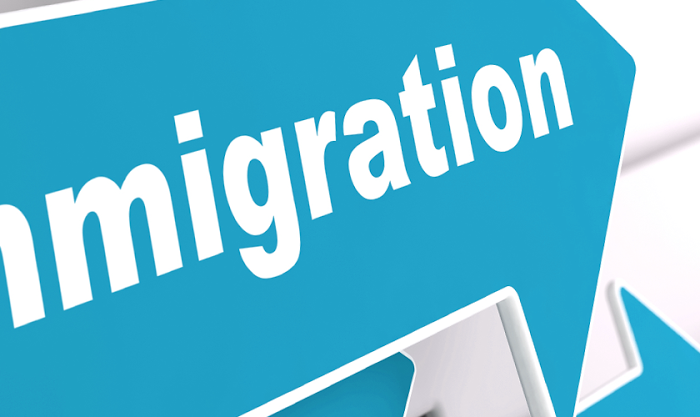 The importance of an immigration consultant